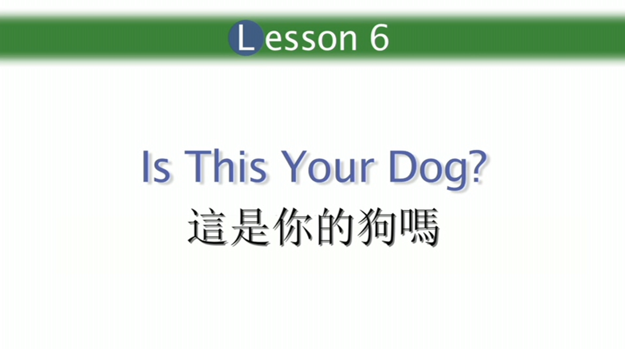 Lesson 6 Is This Your Dog? 这是你的狗吗?